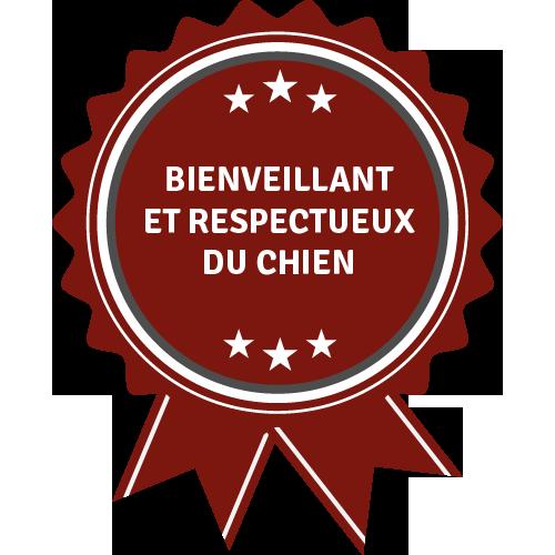 badge-100-positif